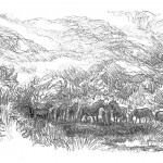 illustrations-viking-blood-secrets-forlaget-mari-15