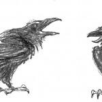 illustrations-viking-blood-secrets-forlaget-mari-28